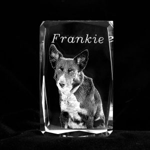 Custom crystal pet memorial from your photo