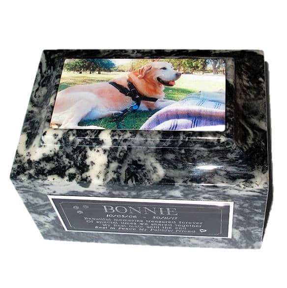 Photo of Pet on Marble Cremation Urn